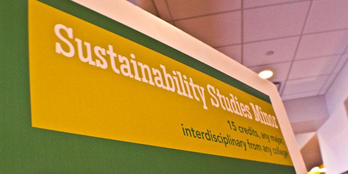 Sustainability Minor Banner