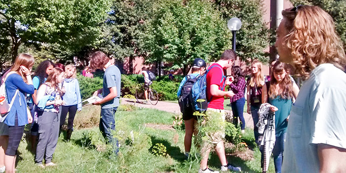 students enjoy the west bank community gardens