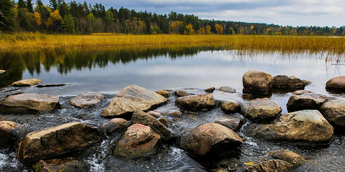 Stream water flows over rocks