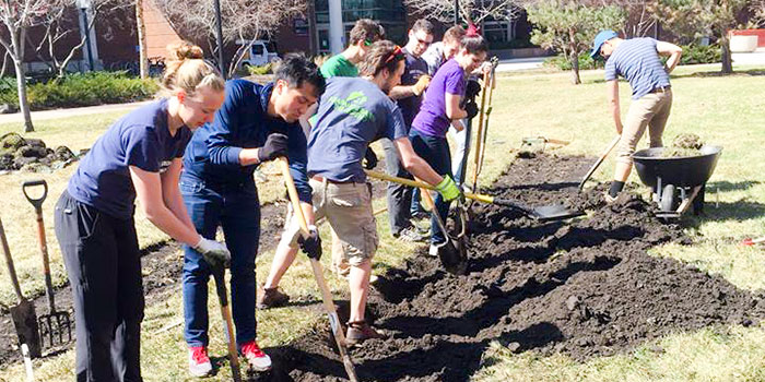 students dig for a campus greening initiative