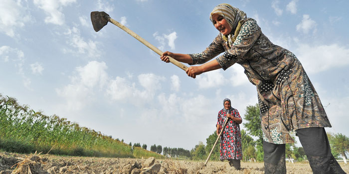 woman tilling soil
