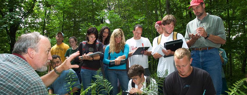 Group of students in forest taking notes on walking tour