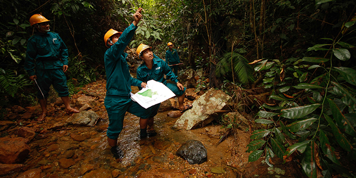 surveyors in the jungle