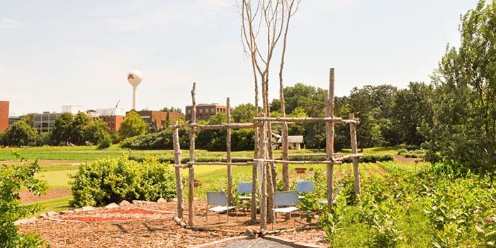 UMN Medical Gardens