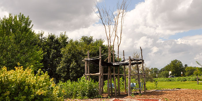 UMN Native American medicine gardens