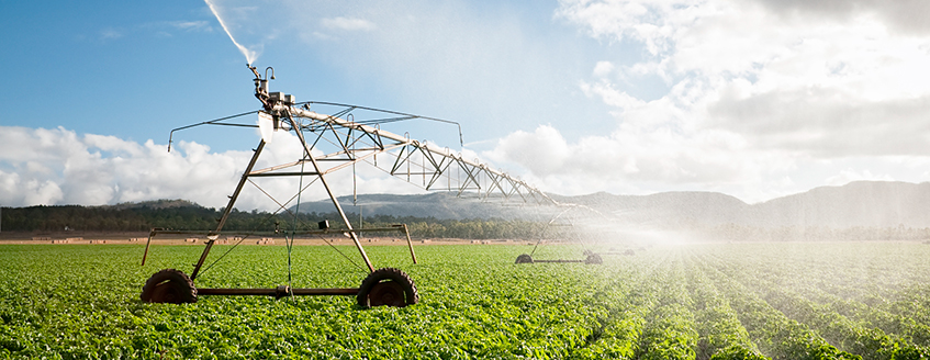 Field and Crop Irrigation System