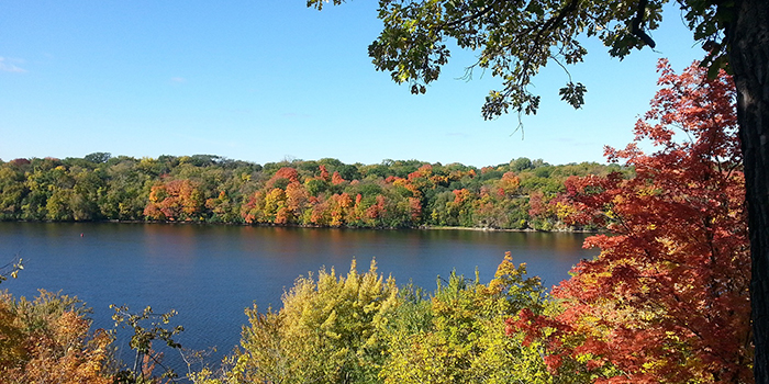 Lake surrounded by fall foliage
